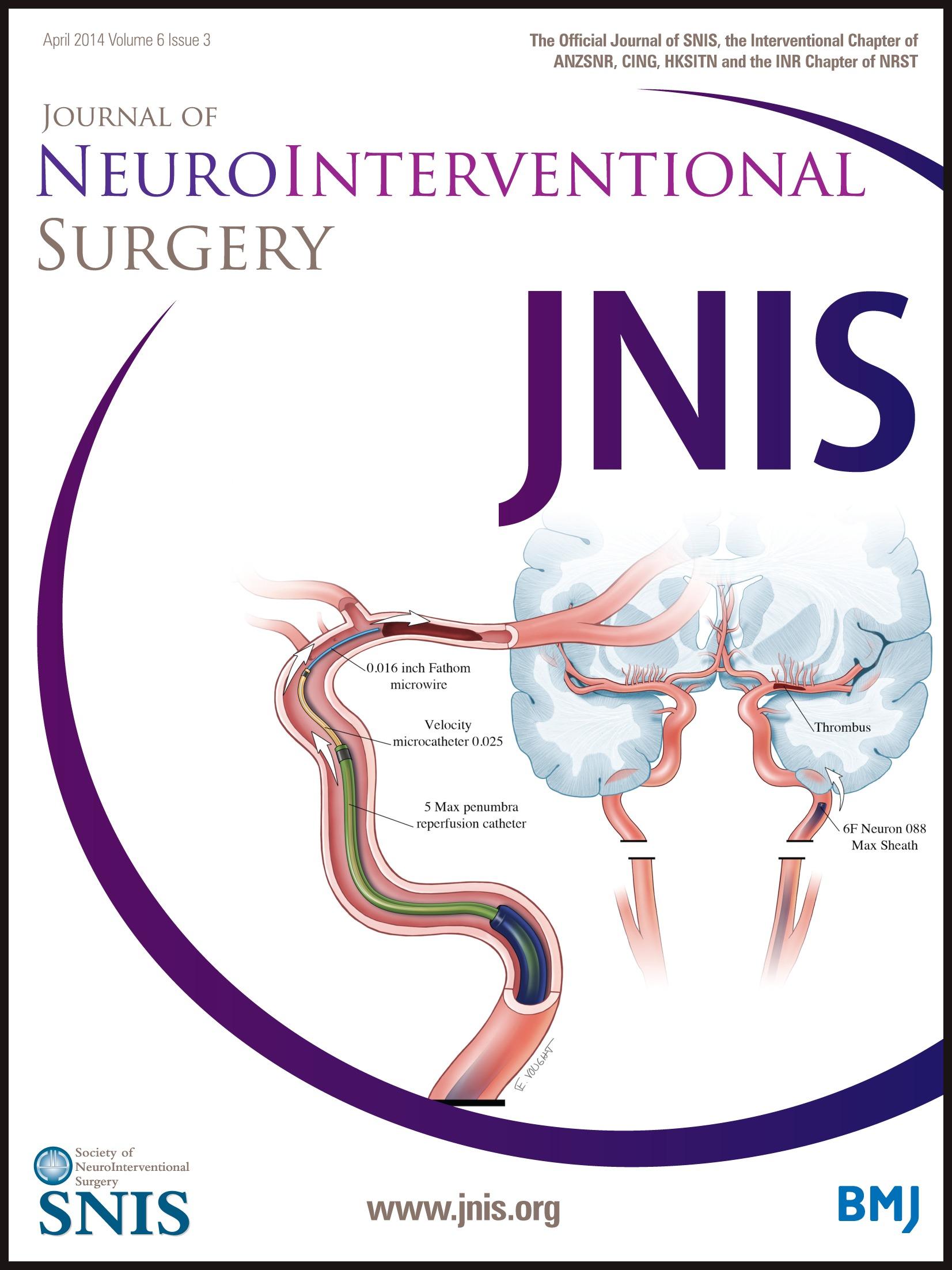 Ultrasound guided V3 segment vertebral artery direct percutaneous ...