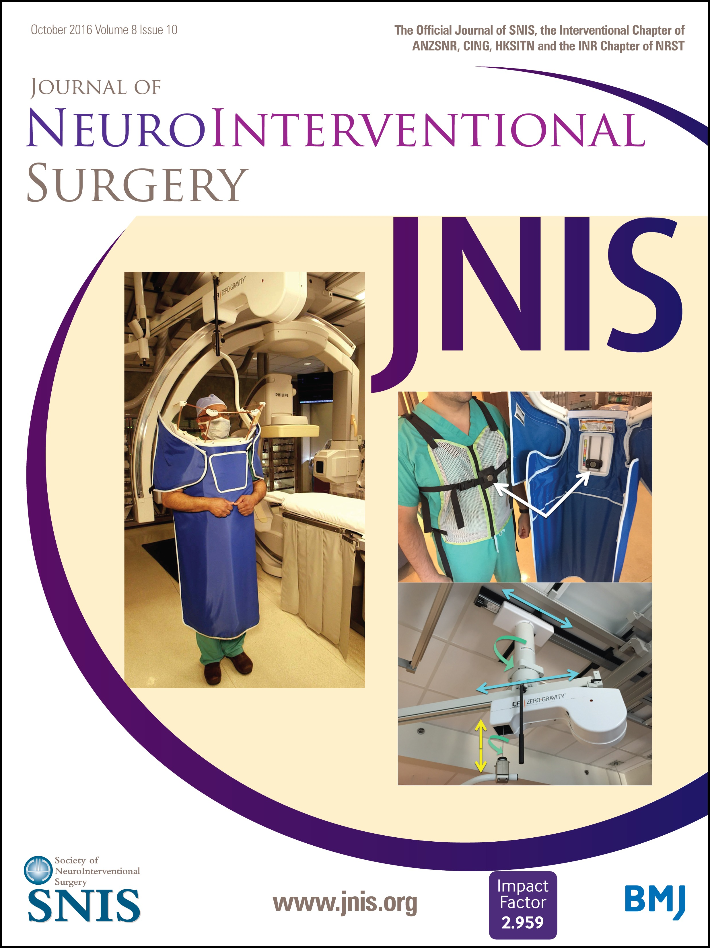 Training Guidelines for Endovascular Ischemic Stroke Intervention